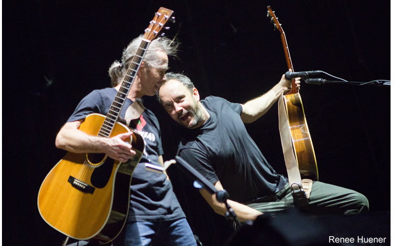 DMB_By_Renee_Huener
