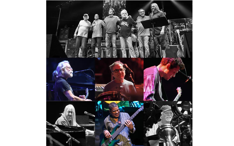 dead and company collage