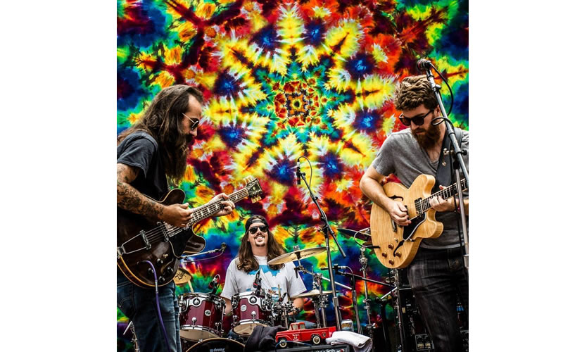 terrapin faimly band guitarists